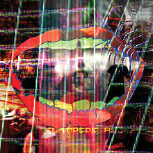 Animal Collective- Centipede Hz (2012)